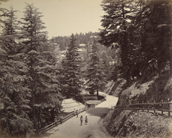 View from Talbot House, Simla.